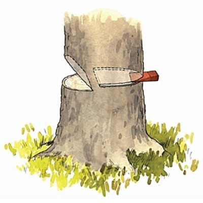 How to Chainsaw a Tree