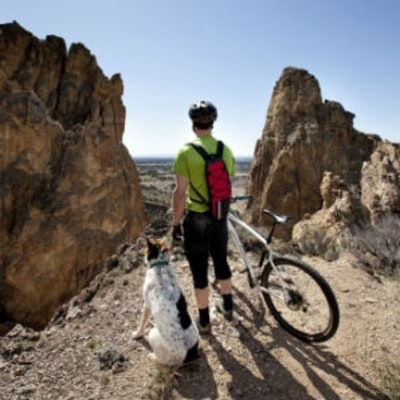 How to Mountain Bike With Your Dog