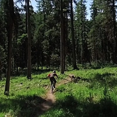 Mountain Bikes and Sour Beers: A Perfect Day in Flathead Valley