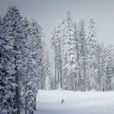 Northstar, California: Where to Ski Now
