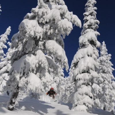 Schweitzer, ID: Where to Ski Now
