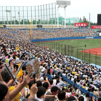 The Japanese Baseball Game