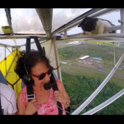 Watch an Ultralight Pilot Realize There's a Cat on His Wing