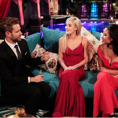 Bachelor Nick Viall's Season 21 Contestants Include an Aspiring Dolphin Trainer, Food Truck Owner and More!