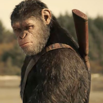 Watch Woody Harrelson in Brooding 'War for the Planet of the Apes' Trailer