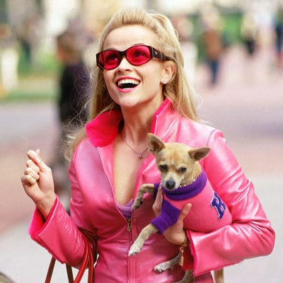 Relive Elle Woods' Pinkest Styles in honor of Legally Blonde's 15-Year Anniversary