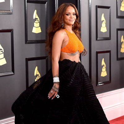 Grammys 2017 Red Carpet: See the Best Dressed Stars!