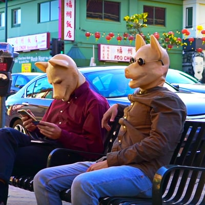 Watch Mac DeMarco's Goofy, Sun-Dappled 'This Old Dog' Video