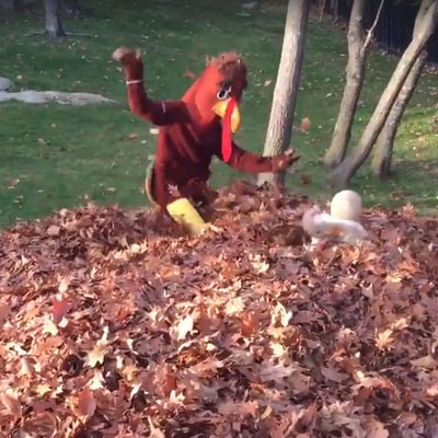 Tom Brady Dresses as a Turkey, Scares His Kids on Thanksgiving: Watch!